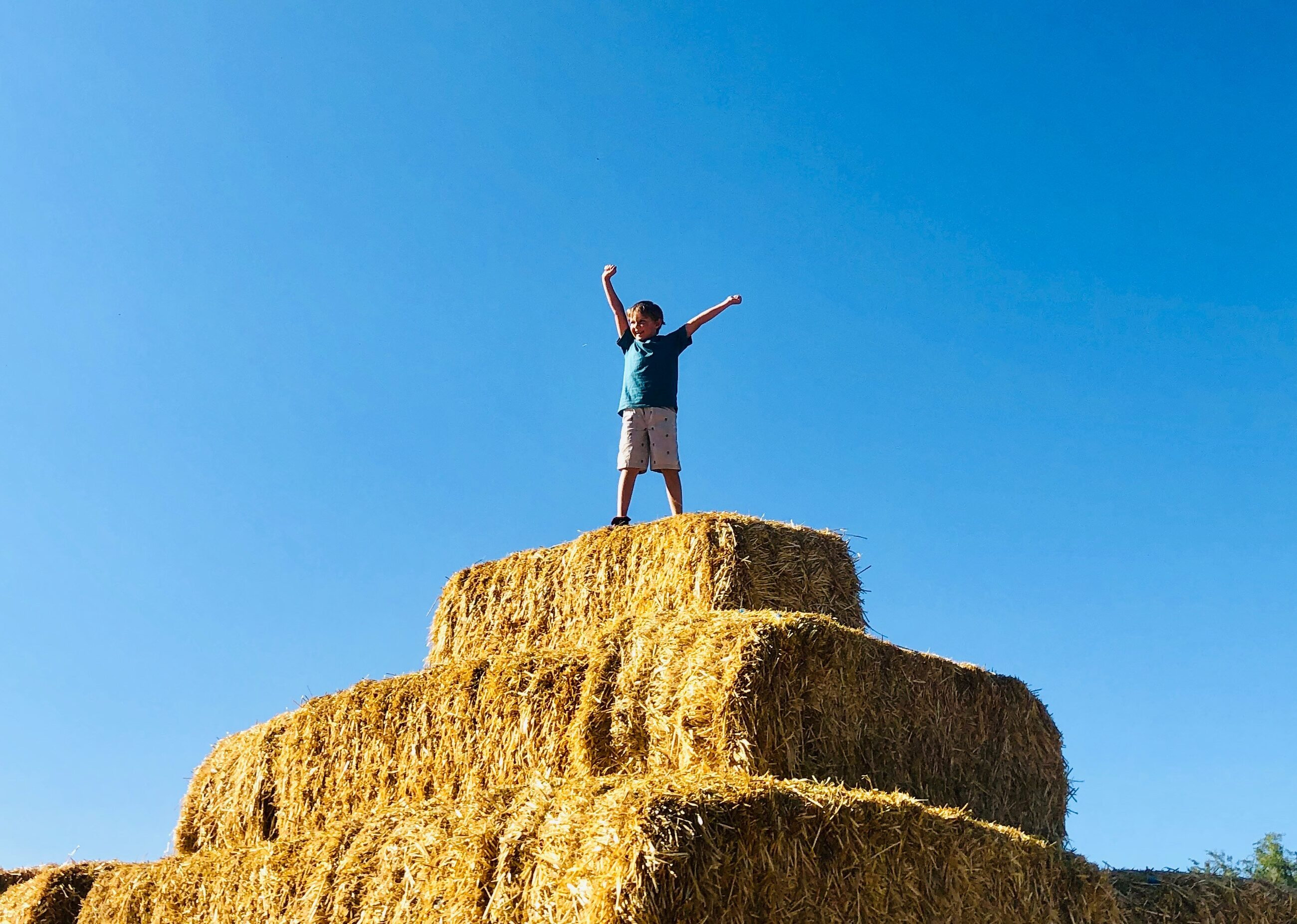 Giant Pyramid made of straw bales at Glen Ray's Corn Maze and Pumpkin Patchd