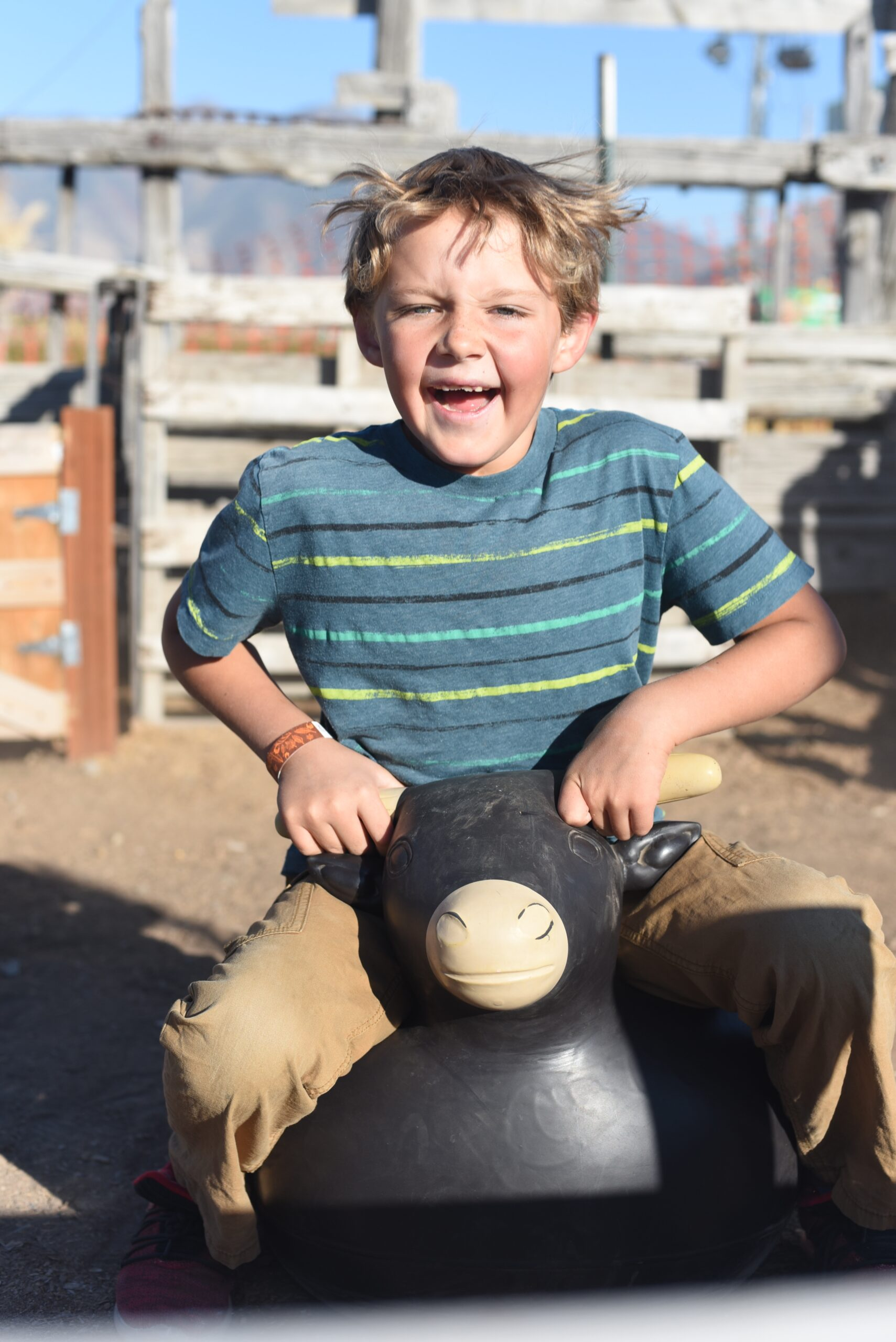 Boy bouncing on a blow up Bull in the Lil; Buckaroo Rodeo at Glen Ray's Corn Maze