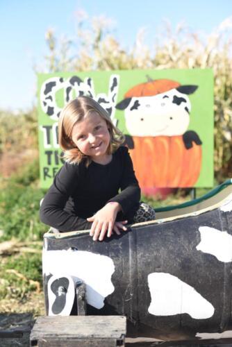 Glen Ray's Corn Maze Cow Train