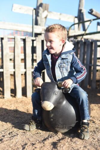 Riding the bulls in the Lil' Buckaroo Rodeo
