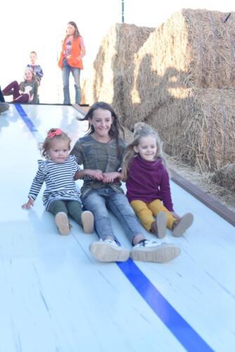 Fun on Glen Ray's Giant Slide