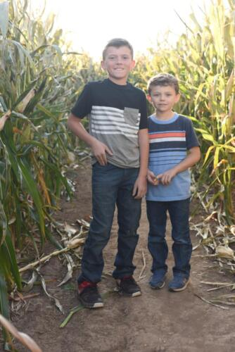Corn Maze Fun!