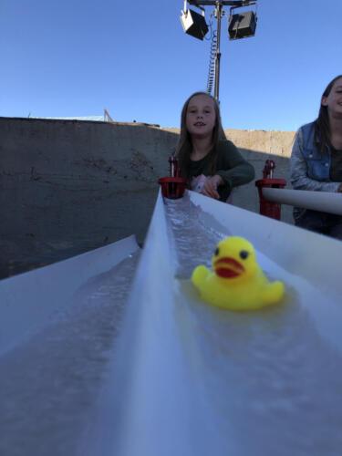 Rubber Ducky Races