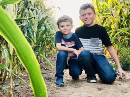 Fun in the corn maze