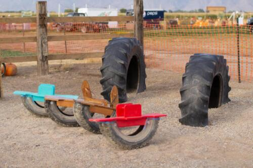 Fun Teeter Totters and Tires to play on.